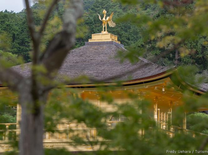 Kyoto_-_Japão_-_Foto_Fredy_Uehara_(49).