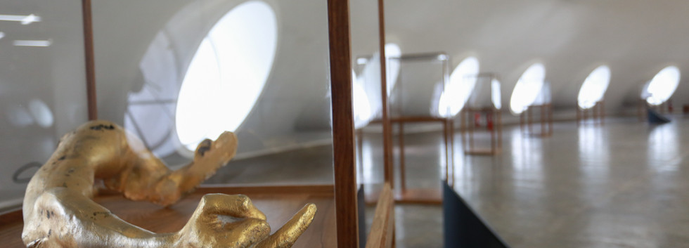 Raiz Weiwei - Foto Fred Uehara-SP24h (53