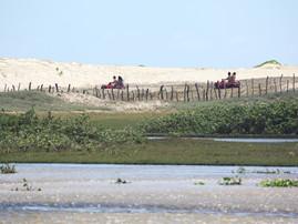 Rio Punaú (2).jpg