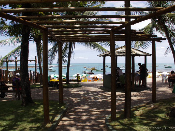 Bahia (10).jpg