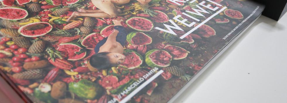 Raiz Weiwei - Foto Fred Uehara-SP24h (89