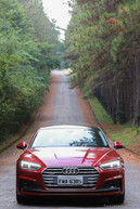 Audi A5 Sportback Ambition Plus (15).jpg