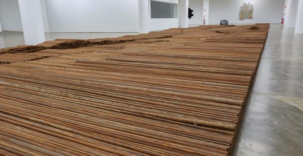 Raiz Weiwei - Foto Fred Uehara-SP24h (63
