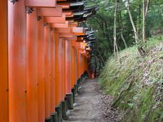 Kyoto_-_Japão_-_Foto_Fredy_Uehara_(16).