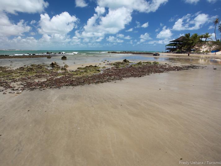 Praia de Genipabu (4).jpg