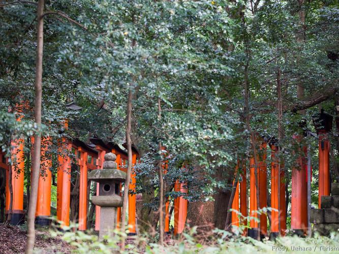Kyoto_-_Japão_-_Foto_Fredy_Uehara_(22).