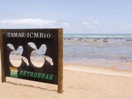 Bahia (25).jpg