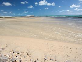 Praia do Forte (3).jpg