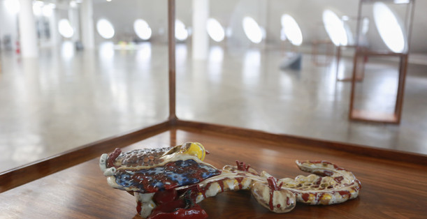 Raiz Weiwei - Foto Fred Uehara-SP24h (58