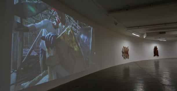 Raiz Weiwei - Foto Fred Uehara-SP24h (75