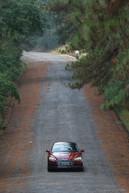 Audi A5 Sportback Ambition Plus (12).jpg