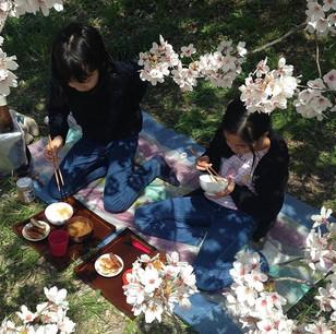 汁飯香4日目は、なんとトンカツ付き!じゅうじゅうトンカツあげて、炊飯器とお味噌汁のお鍋を持って、賀茂川へ!ご報告をFBにアップしております。 #汁飯香