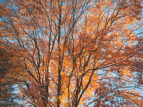 October Roundup: PA Hiking, Photo specs and more!