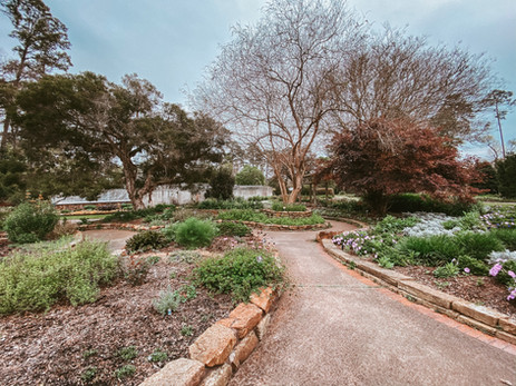 Budget-Friendly Things To Do In Texas: Mercer Botanic Gardens