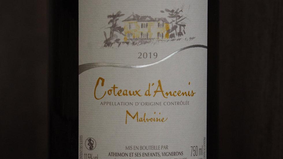 AOP Coteaux d'Ancenis, Domaine des Génaudières, Malvoisie, 2019