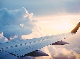 le danger de prendre l'avion avec son ch