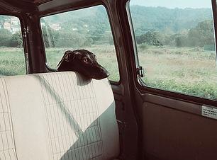 peut-on briser la vitre d'une voiture po