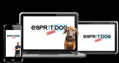 ESPRIT DOG CHIOT VENTE.png