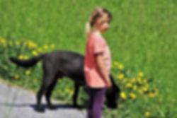 chien sauveur de vie