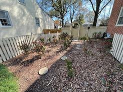 Rose garden April 5.jpg