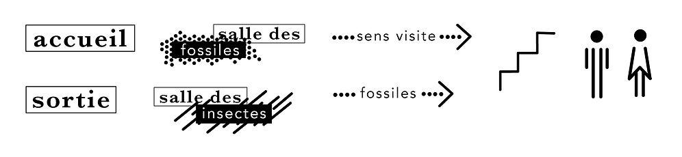 Signalétique_musée_diversité_especes_ang