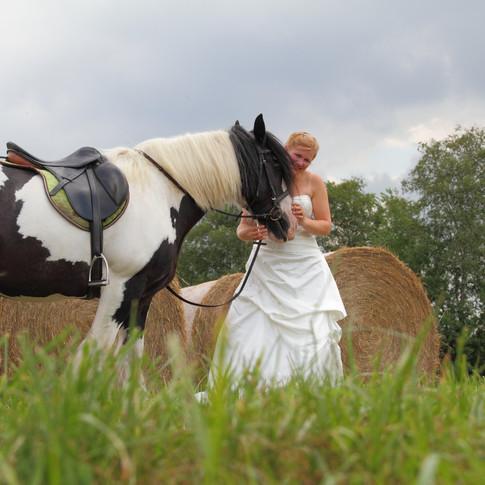 Braut und Pferd