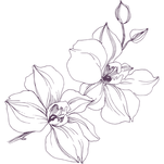 Copy of Flower Accent - dark purple_edit