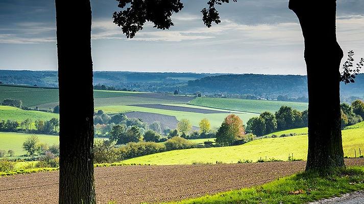 Zuid-Limburg1%20(1)_edited.jpg