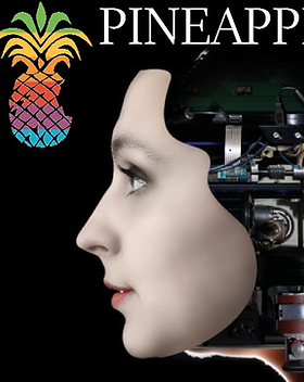 Crime et Robotique2.png