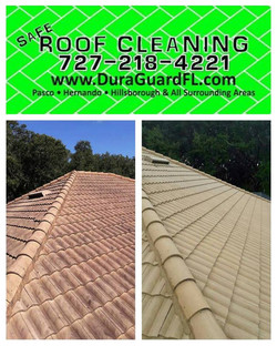 Tile roof cleaning and sealing