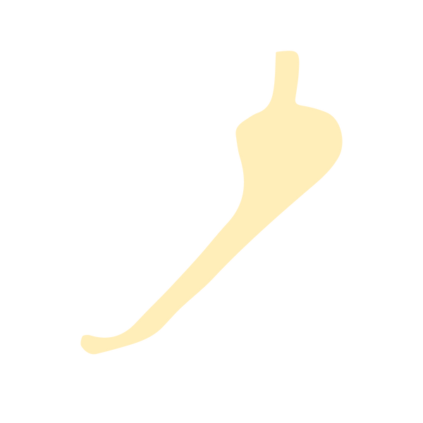 20190312_WebsiteIcons-22.png