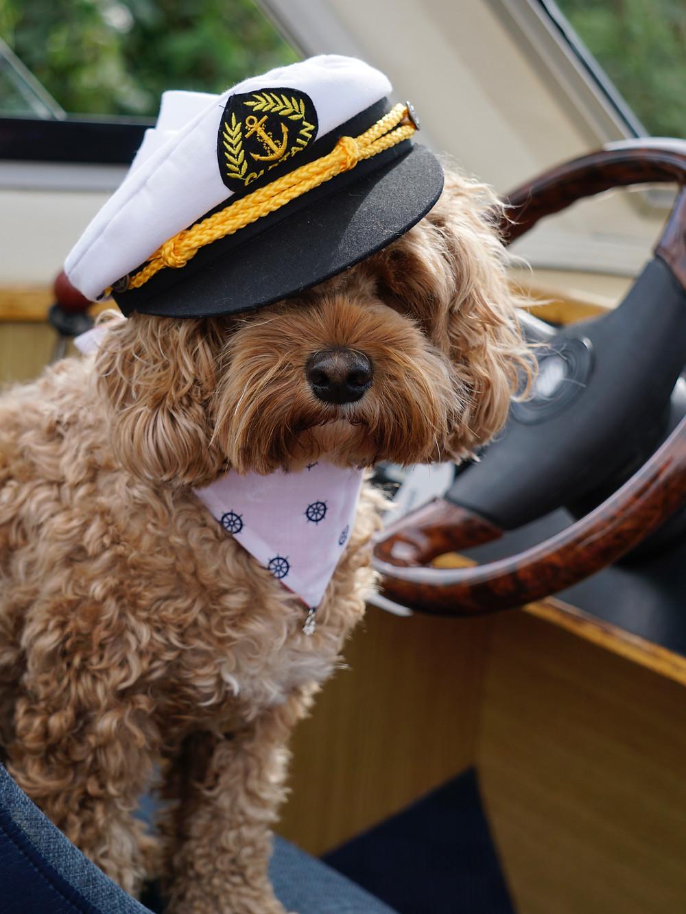 Captain Rea on the Moorhen - Norfolk Broads