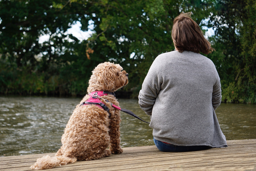 Making the memories with my little girl - Little Rea on the Norfolk Broads