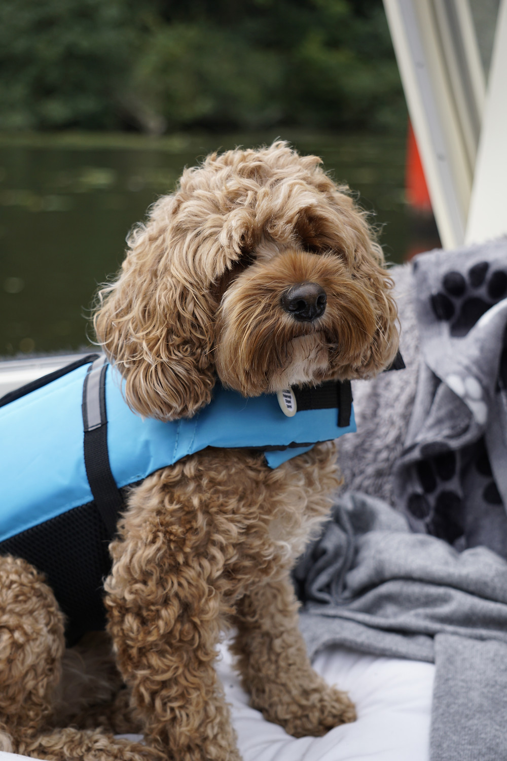 The straight-jacket of Rea's boating life