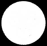Horiz White Transparent logo only.png