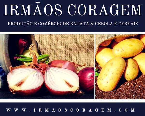 www.irmaoscoragem.com (1).png