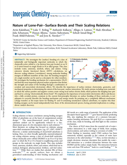 Nature of Lone-Pair–Surface Bonds and Their Scaling Relations
