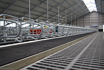 DSC_8709-Meadow-mattress.JPG
