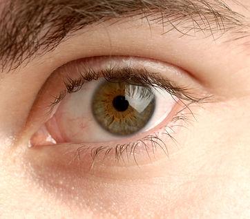 Iridologie : l'iris permet d'évalue le terrain naturopathique et vital d'une personne.L'alimentation est la première technique employée en naturopathie. Agathe Lapalut Massage bien-être Mouroux Coulommiers Seine et Marne 77