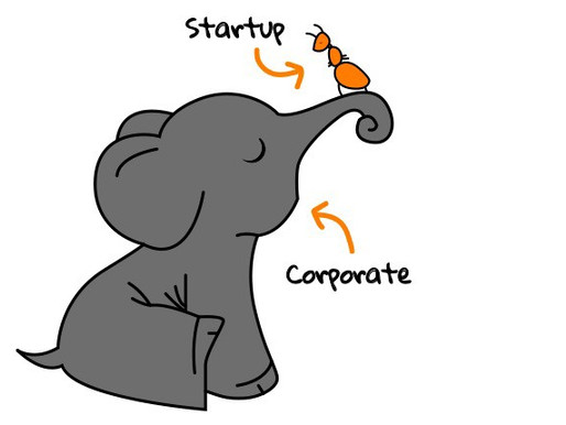 Will big corporate partners chew and swallow my startup?