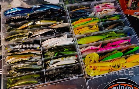 delalande pêche moniteur guide de pêche cédrick plasseau pêche sportive des carnassiers aux leurres france et etranger fishing aventure