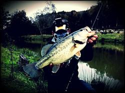 Pêche du black bass aux leurres