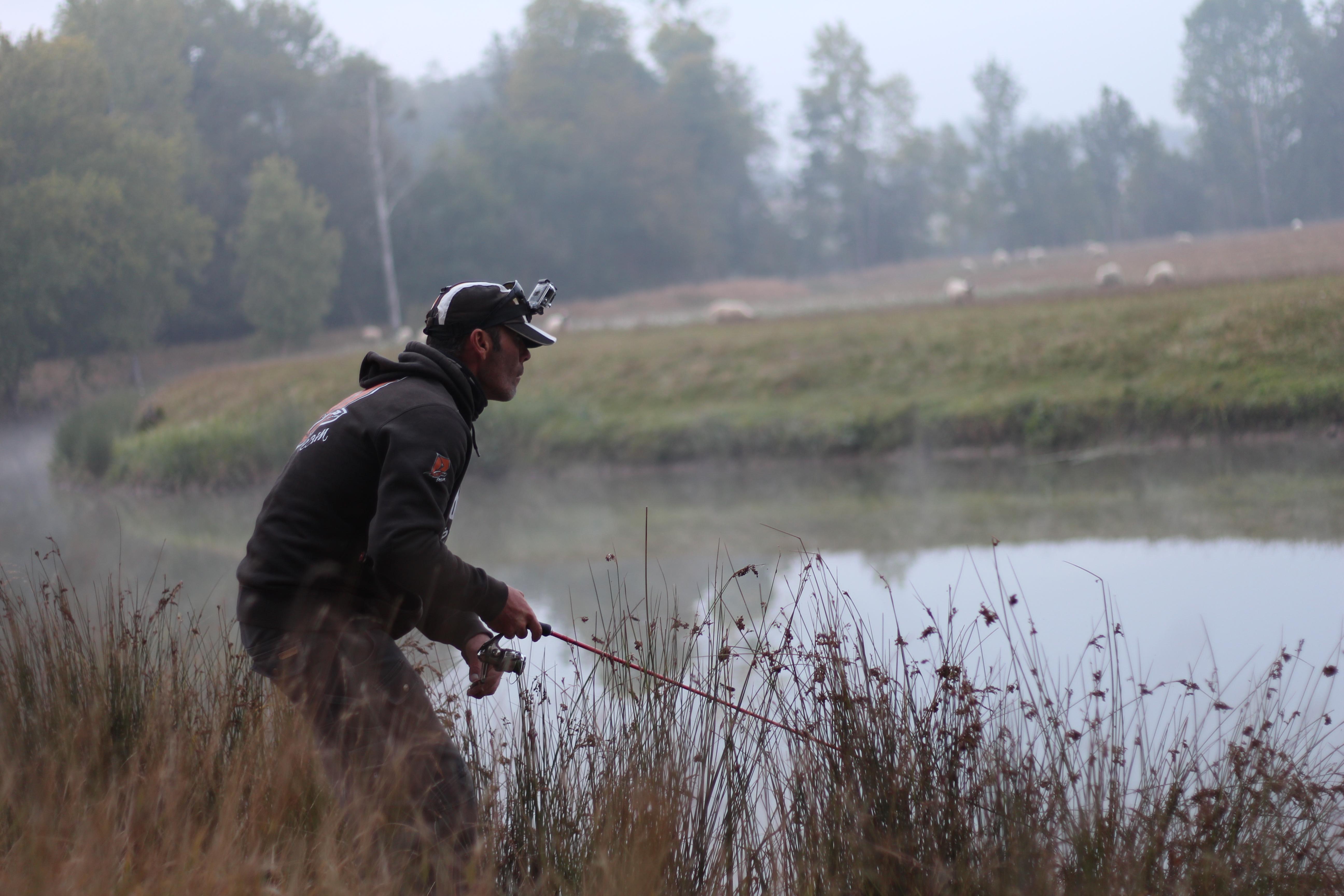Pêche des carnassiers aux leurres
