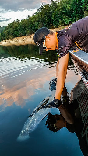 Initiation pêche du Silure Glane