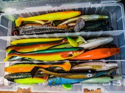 Pêche Brochet big Bait