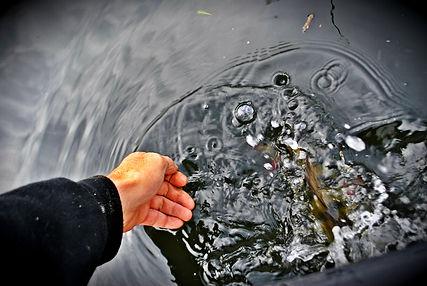 cédrick plasseau moniteur guide de pêche pêche des carnassiers aux leurre fishingaventure.com