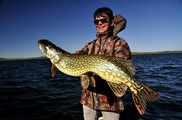 Gros Brochet Extremadura Espagne Fishing Aventure Estrémadure