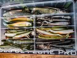 Leurres Shad Delalande Pêche