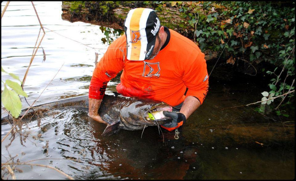 pêche du Silure Glane aux leurres
