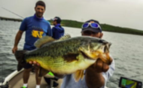 Séjour pêche n estrémadure espagne moniteur guide de pêche fishing aventue garcia sola serena cijara orellana